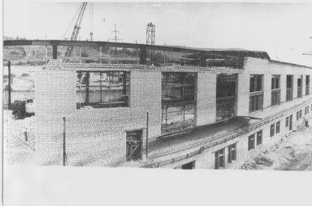Строительство 1-й площадки